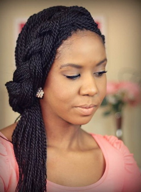 2016 Black Braid Hairstyles 38 12
