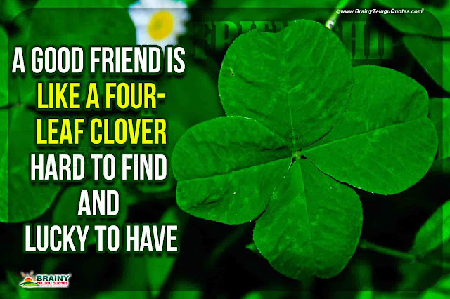 friendship quotes in english, english heart touching friendship quotes, friendship hd wallpapers