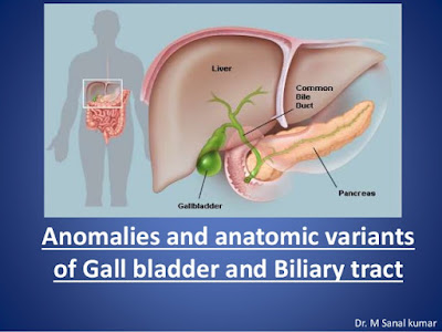 GALLBLADDER AND BILIARY TRACT | Normal Anatomy Of Gallbladder, Enlarge gallbladder (Distended) | Indication, Preparation