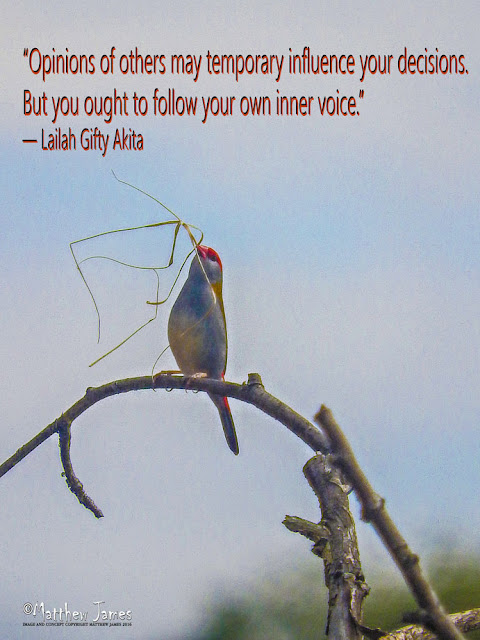 'Opinions of others may temporary influence your decisions. But you ought to follow your own inner voice' - Lailah Gifty Akita