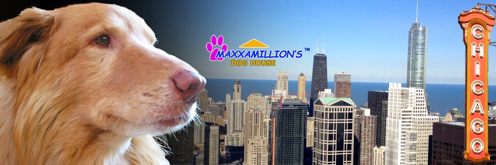 Maxxamillion's  Dog Blog