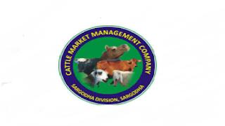 Cattle Market Management Company CMMC Sargodha Job Advertisement in Pakistan Jobs 2020 - 2021
