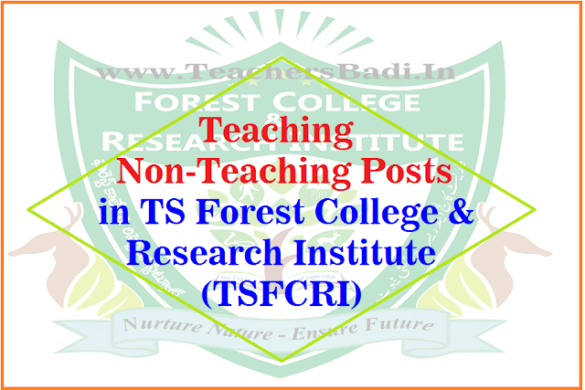 Teaching,Non-Teaching Posts,TSFCRI