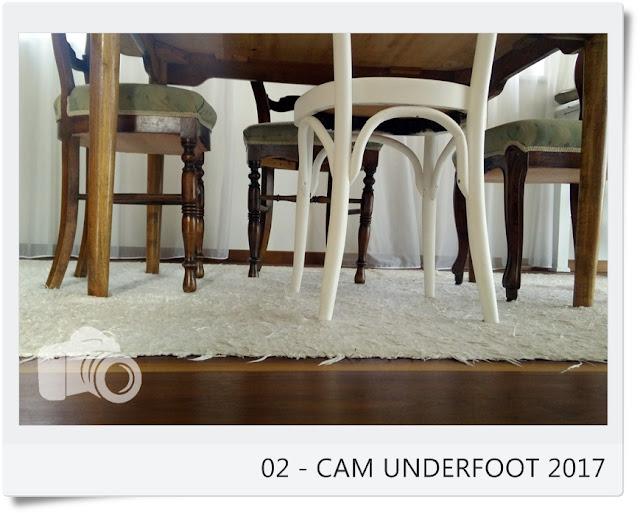 http://vonollsabissl.blogspot.it/2017/01/02-cam-underfoot-unter-den-tisch.html