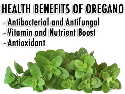Oregano Healing & Health Benefits: Growing Your Own Medicine by Elizabeth Renter