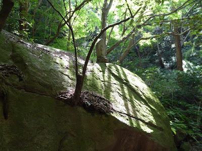 源氏の滝(交野市) 巨大な岩 不動明王の石仏