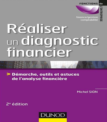 Réaliser un diagnostic financier : démarches,outils et astuces de l'analyse financière PDF