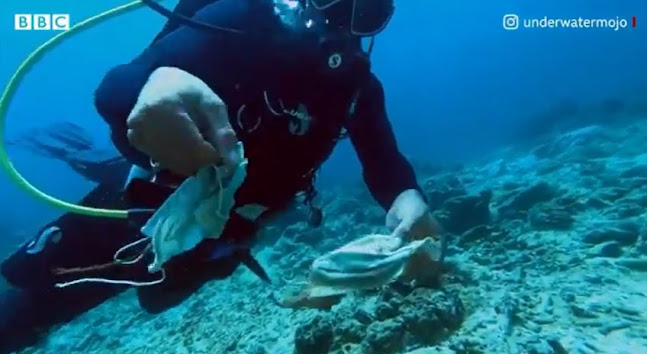 Filippine: barriera corallina invasa dalle mascherine (VIDEO)