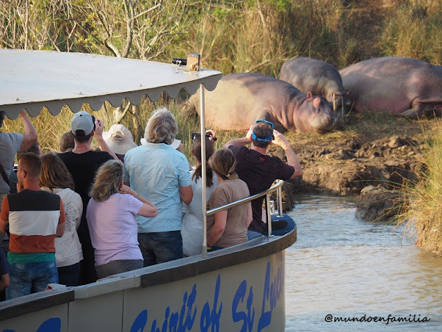 Hippo and Crocodile Tour en St Lucia