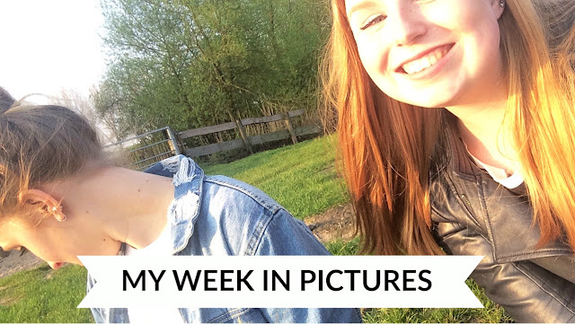 MY WEEK IN PICTURES #3