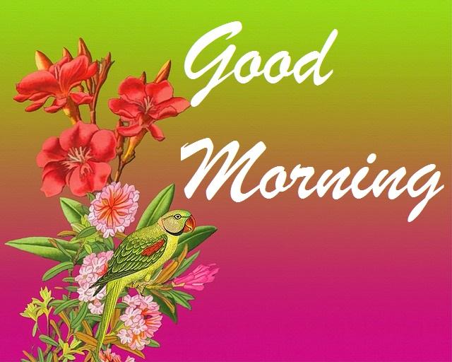 Beautiful good morning bird and flowers image