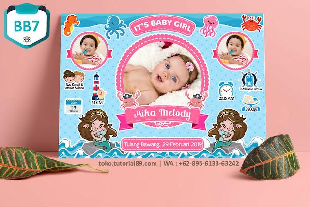 Biodata Bayi Costume Baby Girl Kode BB7   Putri Duyung