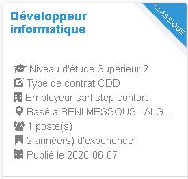 Développeur informatique BENI MESSOUS - ALGER