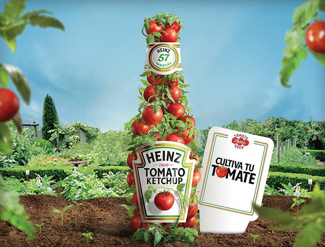 muestras gratis semillas tomates heinz