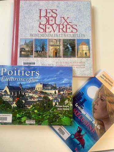 French village diaries, a rainy day in a library, life in France
