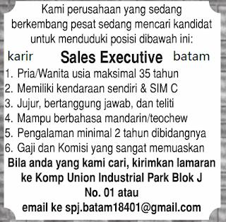 Lowongan Kerja Sales Executive Ditutup 6 Desember 2017