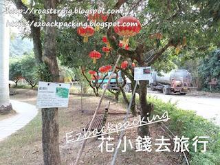大棠有機生態園/大棠荔枝山莊過路遊