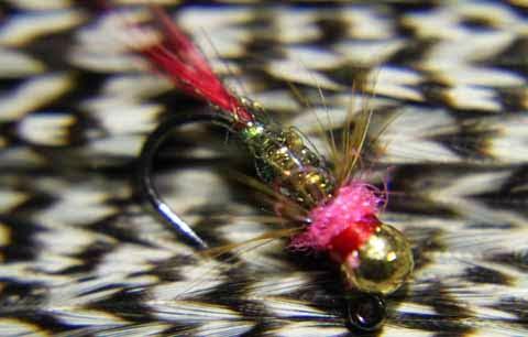 Lance Egan's Red Dart