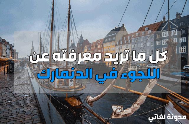 اللجوء والاستثمار في الدنمارك | دليلك الشامل