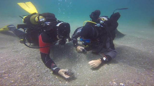 Terkuak, Pemakaman Kuno Langka di Bawah Laut Florida