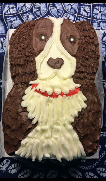 Springer Spaniel Birthday Cake
