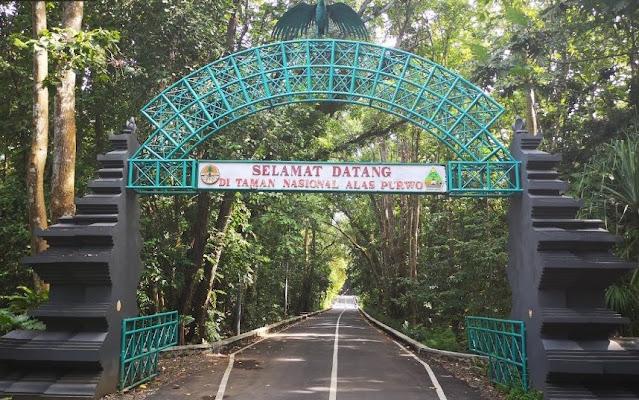 1. Taman Nasional Alas Purwo di Banyuwangi