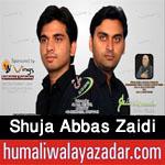 http://www.humaliwalayazadar.com/2015/09/shuja-abbas-zaidi-nohay-2016.html