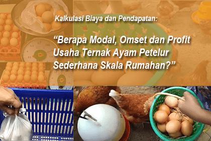 Berapa Modal, Omset dan Profit Ternak Ayam Petelur Sederhana Skala Rumahan?
