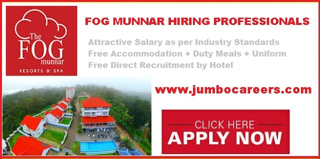 fog resorts munnar jobs , how to get job in fog resort munnar, hr contact details of fog resort munnar, munnar hotel jobs