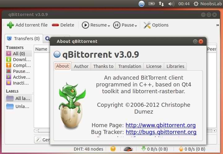 Tweaks/Things To Do After Install Of Ubuntu 13 04 Raring