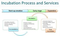 Process of Startup incubation chart in stages