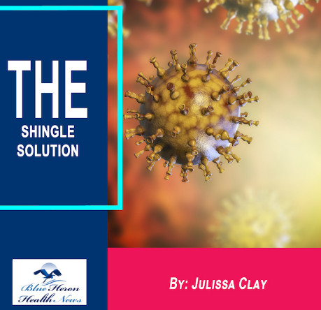 The Shingle Solution reviews SCAM OR LEGIT? Julissa Clay FULL program PDF BOOK DOWNLOAD 2020