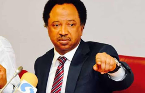 Shehu Sani Reacts To APC Break Up: