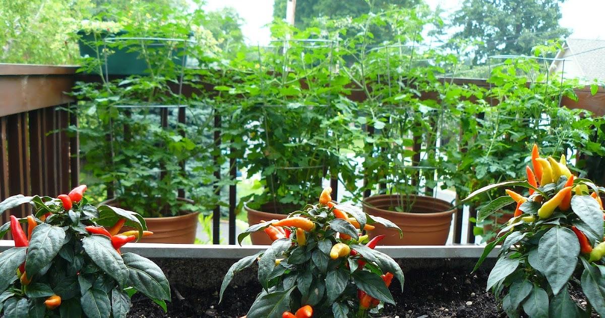 Yard And Garden News