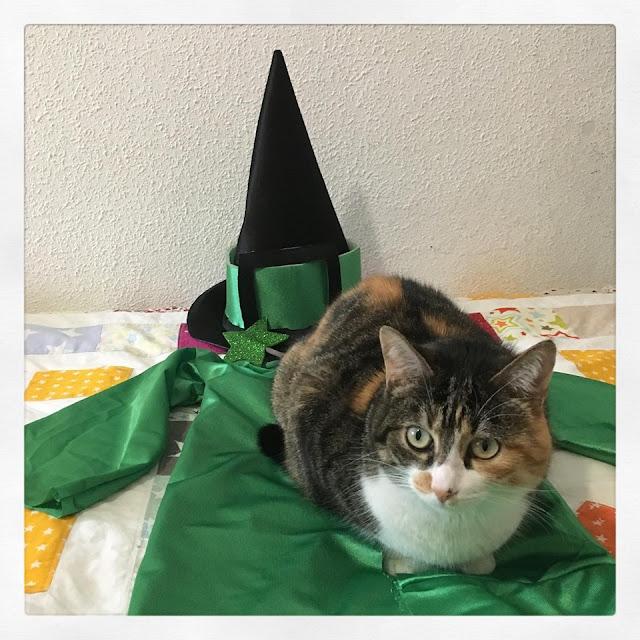 Disfraz de brujo para Halloween
