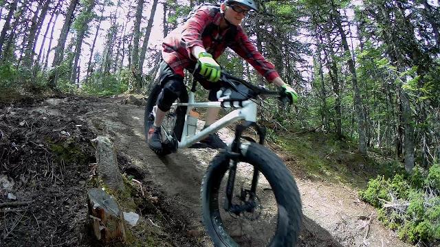 Fatbike Republic Fat Bike Fatbike Newfoundland Wren Inverted Fork Mastodon Wren VS Mastodon Fat Bike Fork