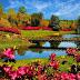 प्रकृति एक सुन्दर वरदान पर निबंध