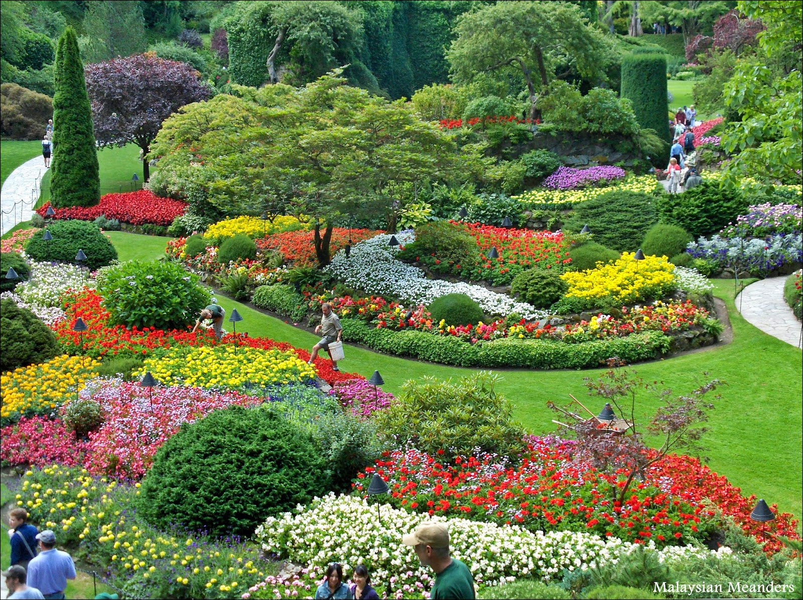 Fall Paintings Wallpaper Malaysian Meanders Beauty And Renewal At Butchart Gardens