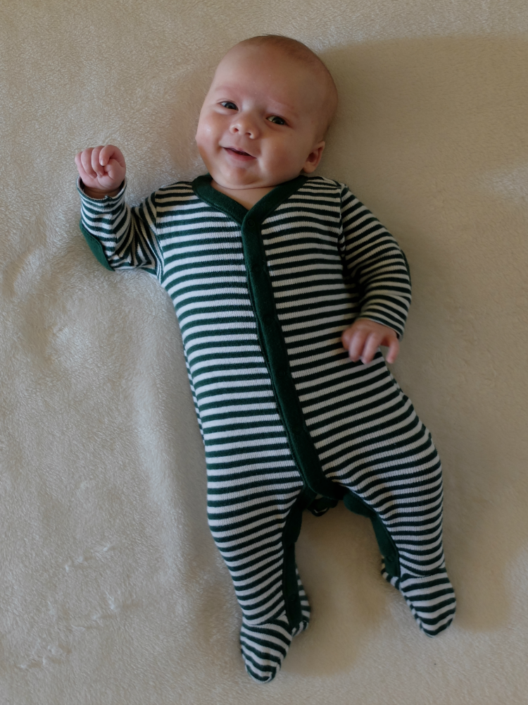 Sweet Turtle Soup - Lincoln   TWO months