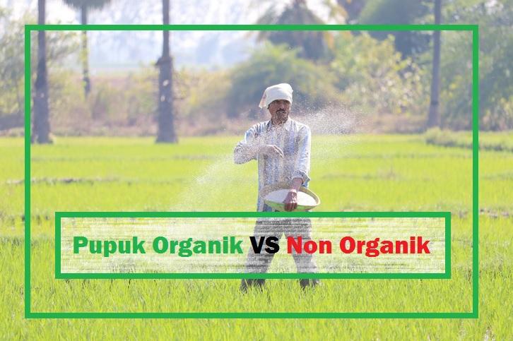 pupuk organik vs pupuk non organik