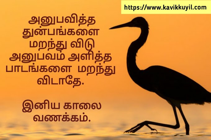 🌞Good Morning Quotes in Tamil || காலை வணக்கம் வாழ்த்துக்கள்🌻