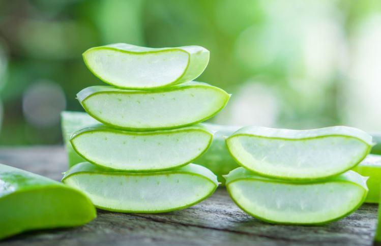 Aloe Vera Gel (Skin Care Tips)