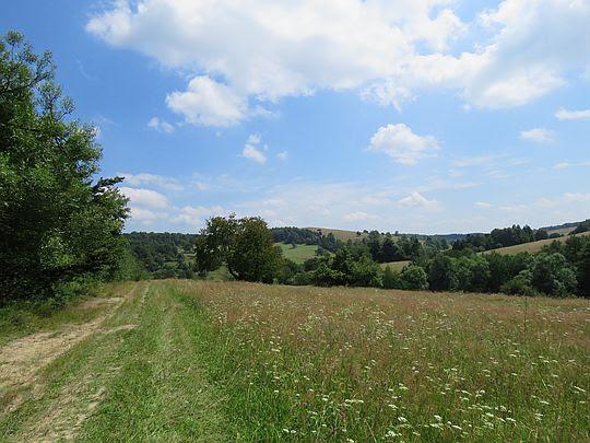 Ostatnie spojrzenie na dolinę wsi Radocyna ze szlaku do Koniecznej.