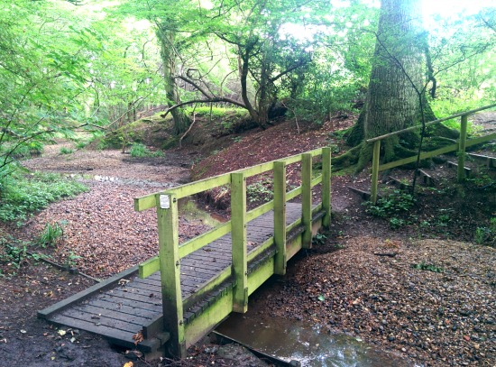 Photograph of the footbridge through Bayford Wood on Walk 50: Bayford Linear