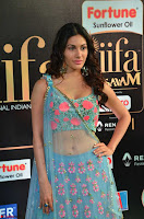Amyra Dastur in Flower Print Choli Transparent Chunni at IIFA Utsavam Awards004.JPG