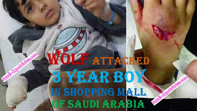 WOLF ATTACKS SAUDI BOY IN SHOPPING MALL
