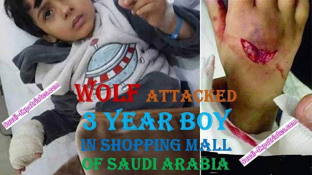 WOLF ATTACKS SAUDI BOY IN SHOPPING MALL