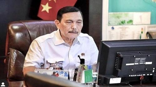 Luhut Bilang Bakal Kurangi TKA dari China di RI