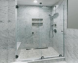 Essence Shower Door
