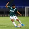 www.seuguara.com.br/Palmeiras/Copa Libertadores/quartas de final/